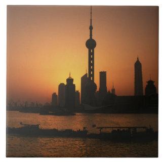 アジアの中国、東洋の真珠TVの上海の眺め タイル
