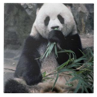 アジアの中国、Chunduのジャイアントパンダ タイル
