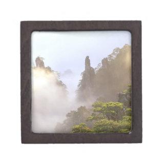 アジアの中国、Huanshan。 黄色い山 ギフトボックス