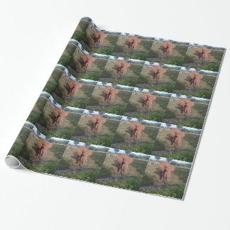 アジアゾウ ラッピングペーパー