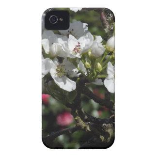 アジアナシの花 Case-Mate iPhone 4 ケース