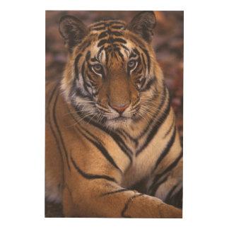 アジア、インドのBandhavgarthの国立公園、 ウッドウォールアート
