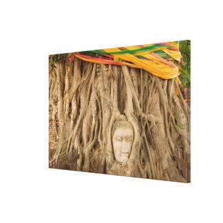 アジア、タイ、シャム、木の轍の仏の キャンバスプリント