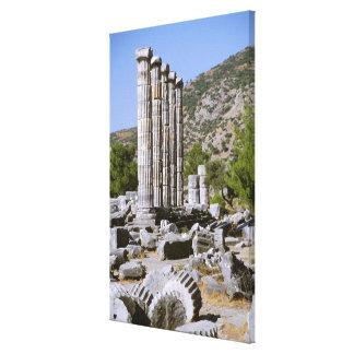 アジア、中東、トルコ、Ephesus。 寺院の キャンバスプリント