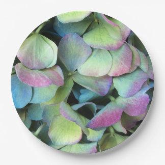 アジサイの多色刷りの花びら --- ペーパープレート
