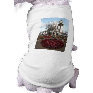 アゾレスの教会 ペット服