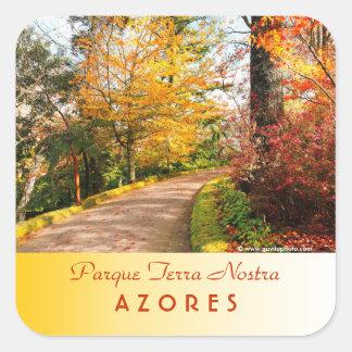 アゾレスの秋の歩道 スクエアシール