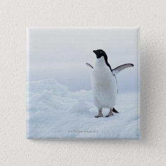 アデリーペンギン、南極大陸 5.1CM 正方形バッジ