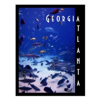 アトランタのアクアリウム、ジョージア ポストカード