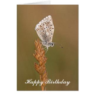 アドニスの青い蝶-バースデー・カード カード