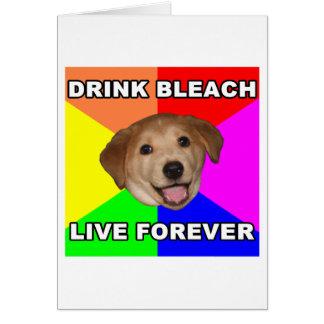アドバイス犬 カード
