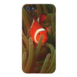 アネモネ魚のiPhone 5の場合 iPhone SE/5/5sケース