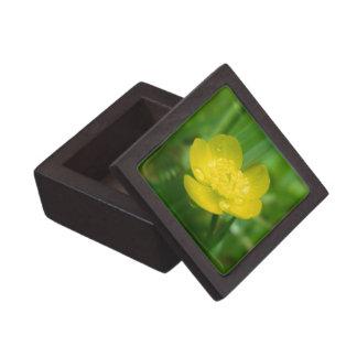 アパラチア山脈のキンボウゲの優れたギフト用の箱 ギフトボックス