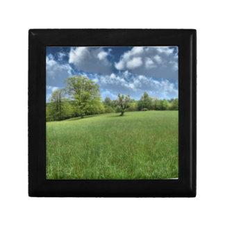 アパラチア山脈の緑のギフト用の箱 ギフトボックス