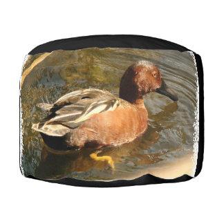 アヒルのティール(緑がかった色)の鳥の野性生物動物のPoufの枕 プーフ