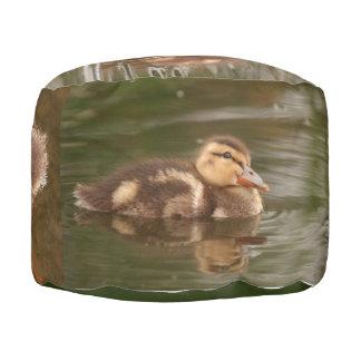 アヒルの子ガモの鳥の野性生物動物のPoufの枕 プーフ