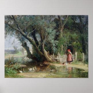 アヒルの池 ポスター