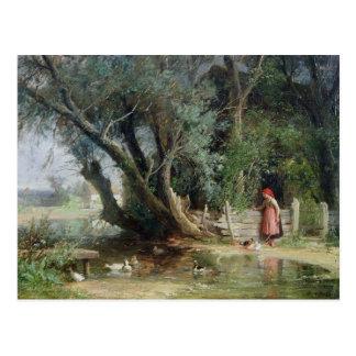 アヒルの池 ポストカード