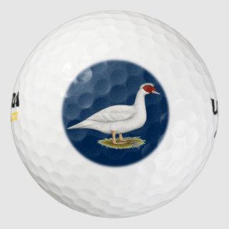 アヒルの白Muscovy ゴルフボール