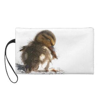 アヒルの赤ん坊の子ガモの鳥の野性生物の動物のバッグ リストレット