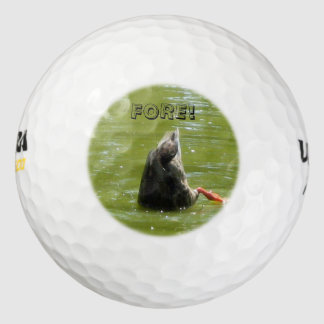 アヒルの飛び込みの前部のゴルフ・ボール(3) ゴルフボール