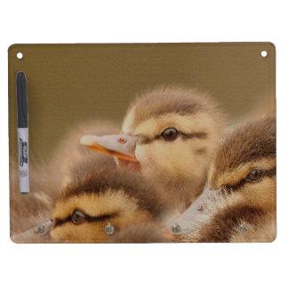 アヒルの鳥の野性生物動物の写真撮影 キーホルダーフック付きホワイトボード
