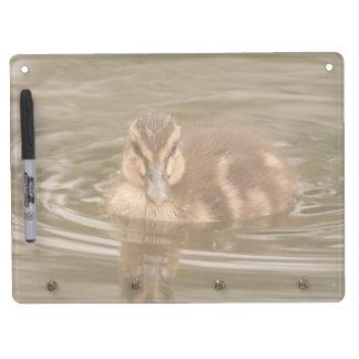 アヒルの鳥動物の野性生物の写真撮影 キーホルダーフック付きホワイトボード