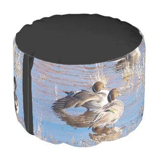 アヒルのPintailの鳥の野性生物動物のPoufの枕 プーフ