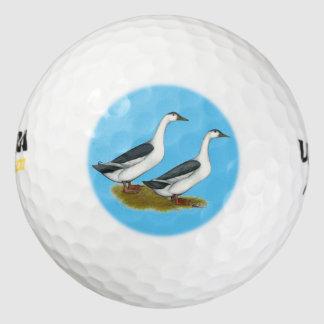 アヒル:  青いカササギ ゴルフボール