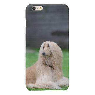 アフガンハウンド犬の写真の光沢のあるiphone 6のプラスの場合