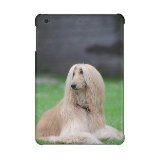 アフガンハウンド犬の写真のipad小型2および3場合