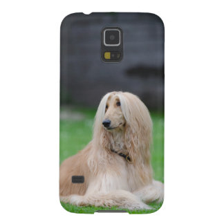 アフガンハウンド犬の写真のSamsungの銀河系S5の箱 Galaxy S5 ケース