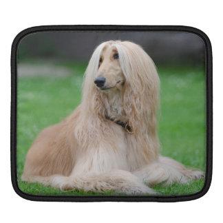 アフガンハウンド犬の美しいIpadの袖 iPadスリーブ