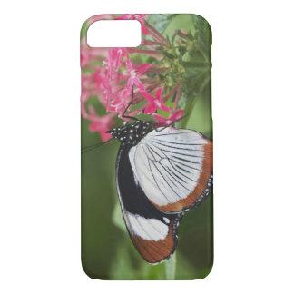 アフリカからの蝶 iPhone 8/7ケース