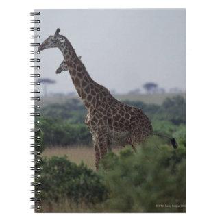 アフリカのキリン ノートブック