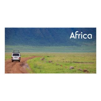 アフリカのサファリ カード