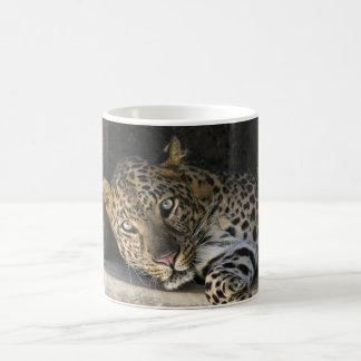 アフリカのヒョウ コーヒーマグカップ