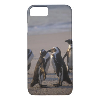 アフリカのペンギン(Spheniscusのdemersus)またはろば2 iPhone 8/7ケース