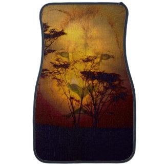 アフリカの日没に見ているライオン カーマット