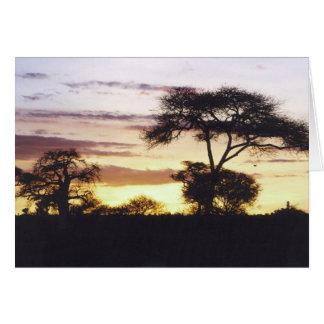 アフリカの日没 カード