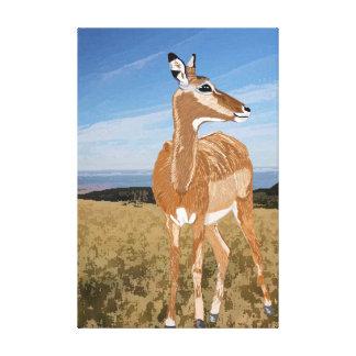 アフリカの牧草地のインパラ キャンバスプリント