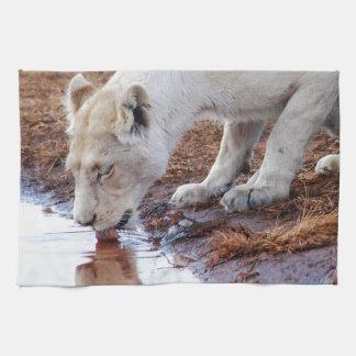 アフリカの白いライオンの反射 キッチンタオル