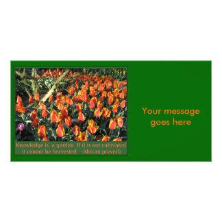 アフリカの諺 カード