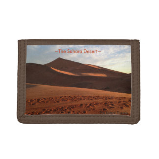 アフリカの財布