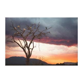 アフリカのSpoonbillsのKandheriの泥地の日没 キャンバスプリント