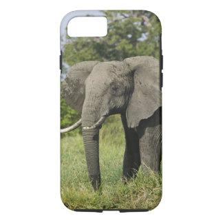 アフリカゾウ、マサイ語マラ、ケニヤ。 Loxodonta iPhone 8/7ケース
