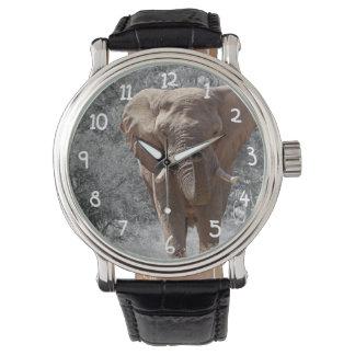 アフリカゾウ 腕時計