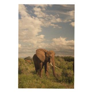 アフリカゾウ、aのLoxodontaのafricana、 ウッドウォールアート