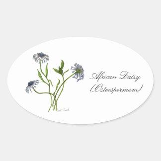 アフリカデイジーの植物のシール 楕円形シール