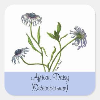 アフリカデイジーの植物のシール 正方形シール
